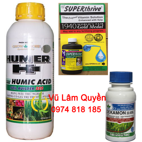 COMBO KÍCH RỄ HUMIC 322 - DEKAMON - SUPER THRIVE